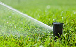 Garden irrigation systems: drip or spray irrigation systems?