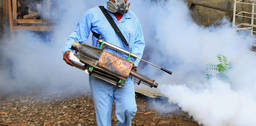 Tips for fumigating your home safely