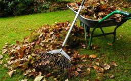 Garden Clean up tips