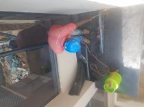 Pvc ceiling & ceiling repairs Randburg CBD Roof water proofing 4 _small