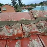 Summer special on all roof painting Pretoria Central Builders & Building Contractors 2 _small