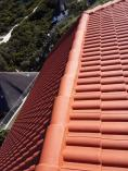 Roof cleaning and painting High Cape Roofing Contractors 2 _small