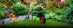 Discounted full payments in advance Constantia Garden & Landscaping Contractors & Services 2 _small
