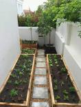 Shepherd Garden Service (Pty)Ltd Showcase Constantia Garden & Landscaping Contractors & Services 3 _small