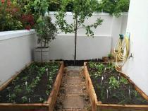 Shepherd Garden Service (Pty)Ltd Showcase Constantia Garden & Landscaping Contractors & Services 2 _small