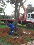 Black Friday Discount Northcliff Land Clearing 2 _small