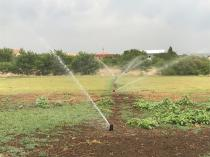 Automatic irrigation systems Centurion Central Garden & Landscaping Contractors & Services 3 _small