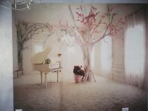 Wallpaper installation Protea Glen Wallpaper Installation 3 _small