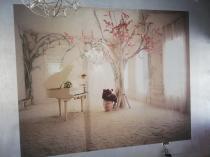 Wallpaper installation Protea Glen Wallpaper Installation 2 _small