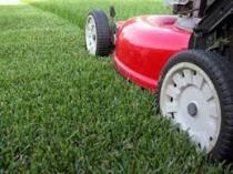 SFS Garden service Centurion Midrand CBD Garden & Landscaping Contractors & Services _small