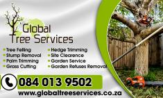 Tree felling services, landscaping, Grass cutting, Garden Services Cape Town Central Tree Cutting , Felling & Removal _small