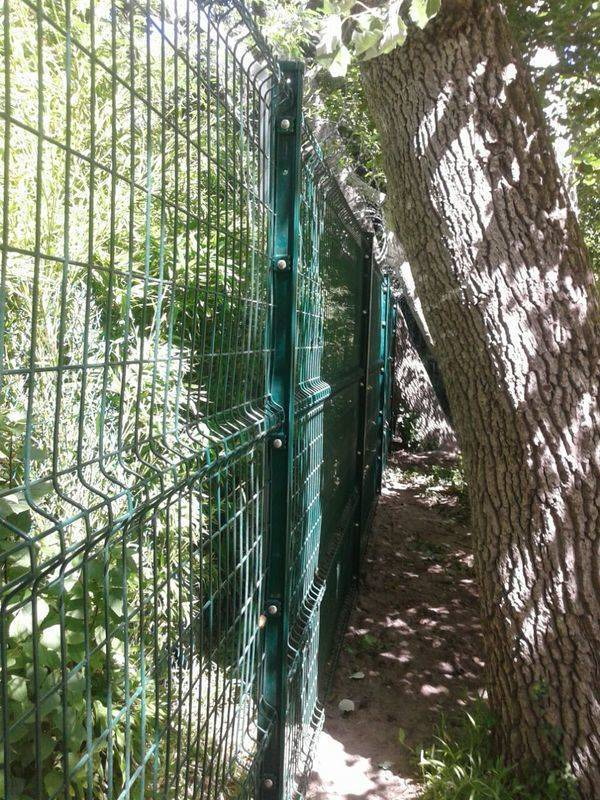 Beta Fence