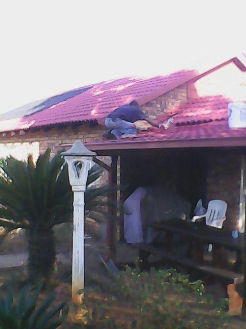 Roof painting in Alberton