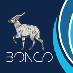 Bongo Group - Property Maintenance Specialists