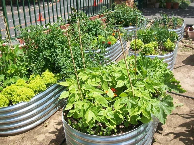 Elongated Corrugated Planter