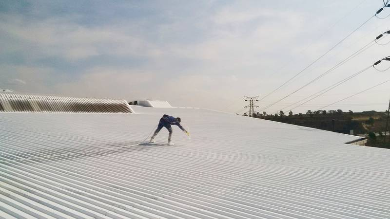 Roof Painting with spray machine