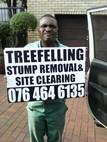 FEM TREE FELLING  AND RUBBLE REMOVALS  WITBANK
